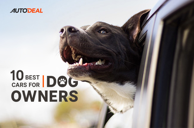 top best cars for dog owners