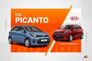 2019 Kia Picanto variant comparision
