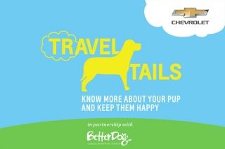 Chevrolet shares their Travel Tails tips for happier, safer journeys with your dogs