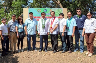 MMPC and DENR plantation convergence