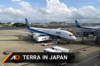 Nissan Terra in Japan
