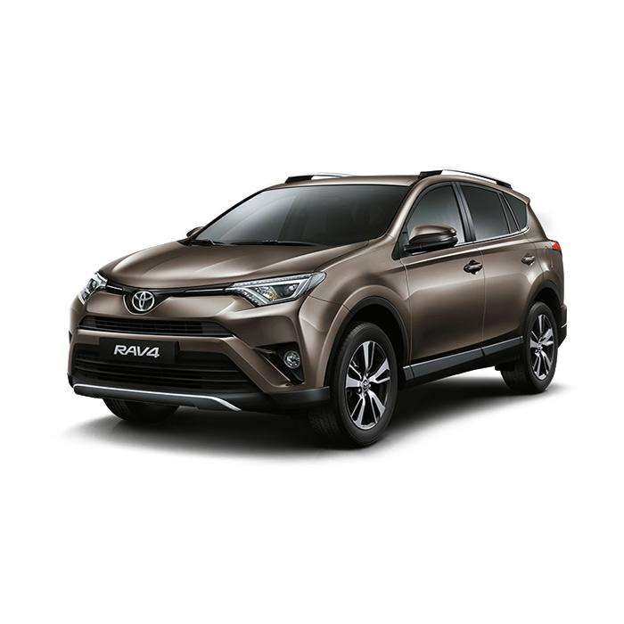 Toyota Rav4 Bronze Metallic