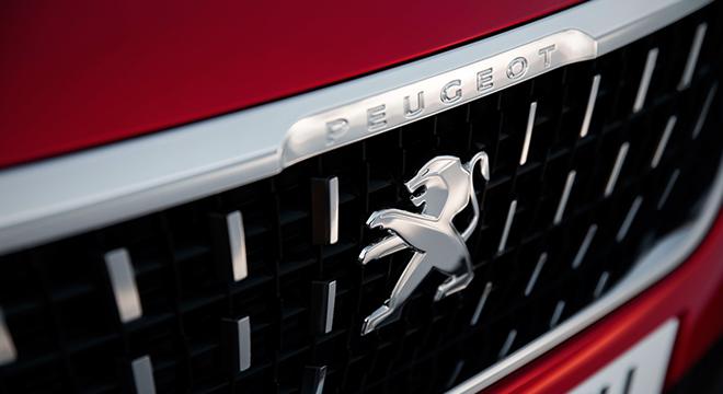 Peugeot 2008 2018 grille