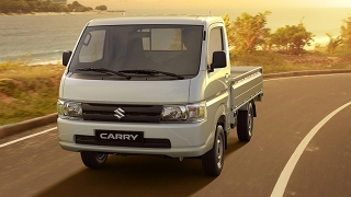 2020 Suzuki Carry exterior press photo
