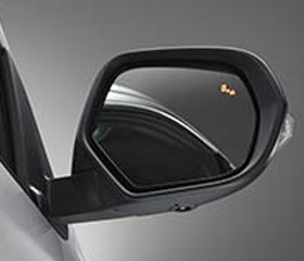Blind Spot Warning (BSW) System