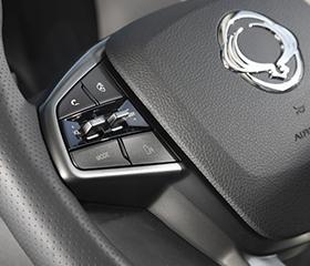 Steering Wheel Audio Controls