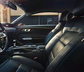Ford leather seats