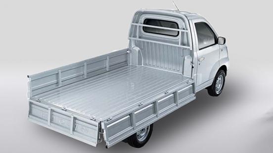 2020 BAIC Freedom Utility Vehicle Single Cab rear