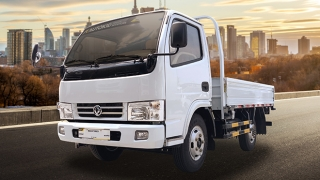 2019 Dongfeng Captain E 4W Dropside 10ft