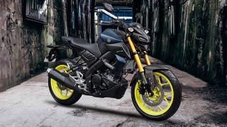 2019 Yamaha MT-15
