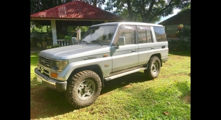 1993 Toyota Land Cruiser Prado 2.5L AT Diesel